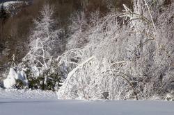 Früher Beginn der Wintersaison in Kärnten